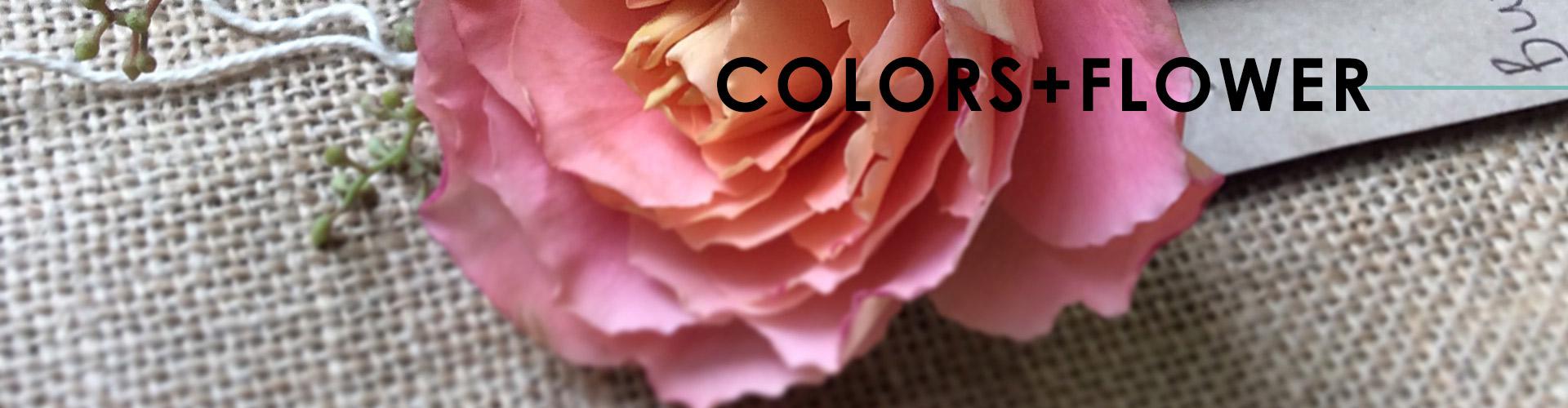 enspiral-flores-slide4-EN